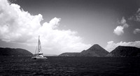BVI's in Black & White